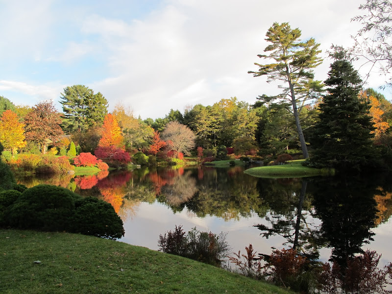 A Visit to Asticou Azalea Garden in Maine - The Martha Stewart Blog