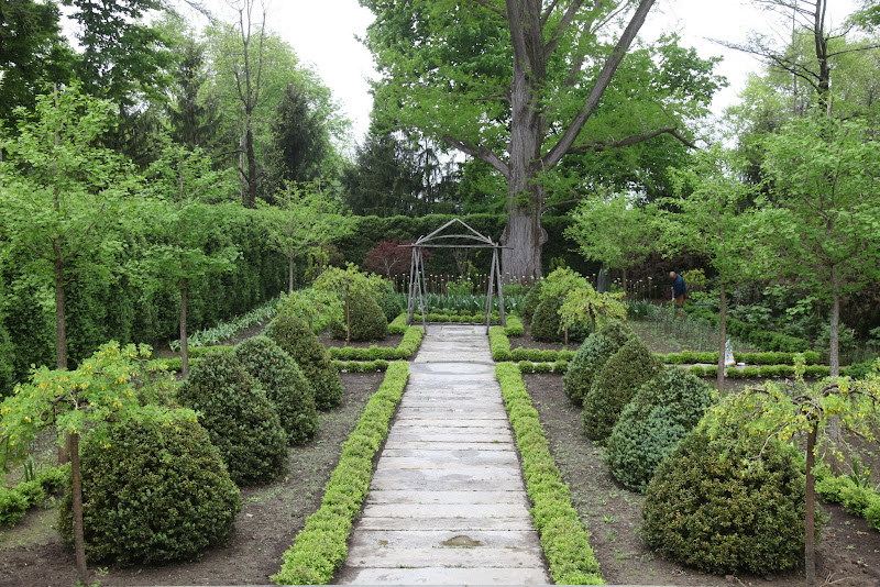 New Hosta For A Shade Garden - The Martha Stewart Blog