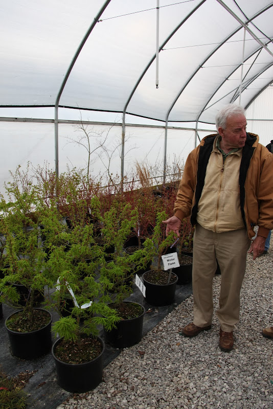Visiting Shadow Nursery In Tennessee The Martha Stewart Blog