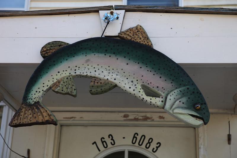 informative essay liking fishing