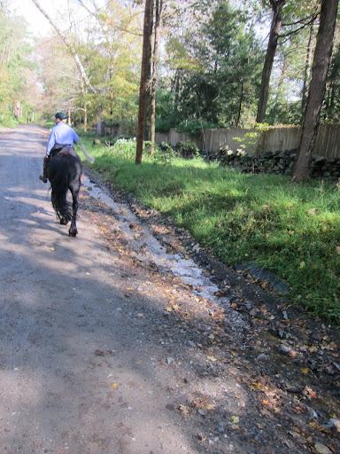 A Beautiful Day For A Horseback Ride The Martha Stewart