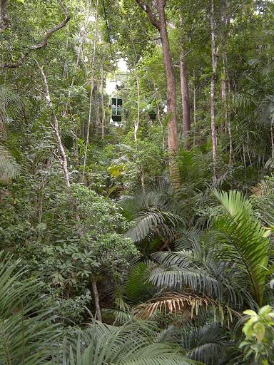 A Guest Blog From Panama The Martha Stewart Blog