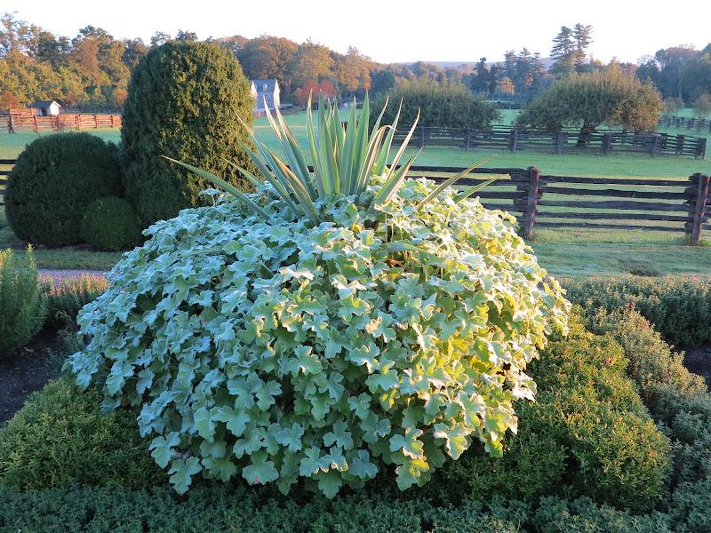 An Early Autumn Tour Of My Farm The Martha Stewart Blog