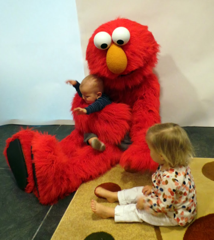 My Grandchildren Celebrated With Elmo The Martha Stewart Blog