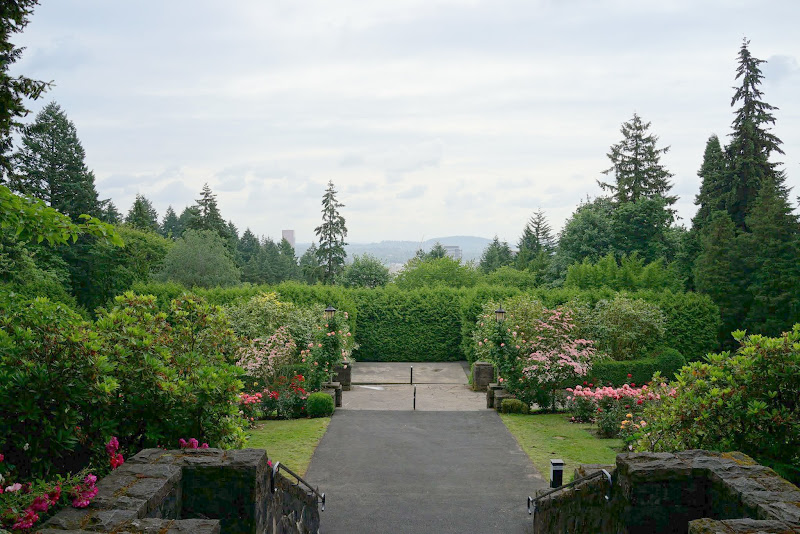 Our Visit To Portland\'s International Rose Test Garden - The Martha ...