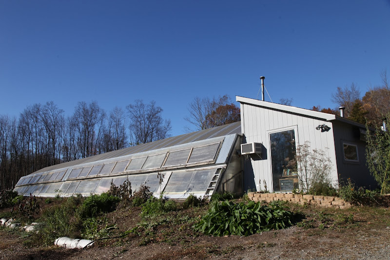 Visiting an Aquaponic Farm Near my Home in Bedford - The